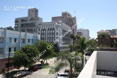 3 Levels of contemporary design! Private roof top deck with city light views! Blocks to the Beach and Marina!
