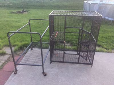 Modified Bird cage