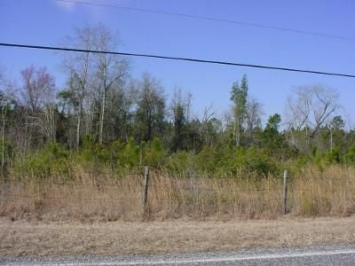 Foreclosure Property in Tifton, GA 31794 - Olive Church Rd & Walker Mt Olive Church Rd