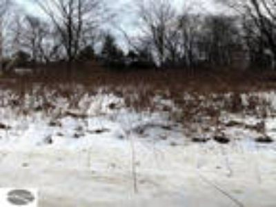 Land For Sale In Mitchell, Mi
