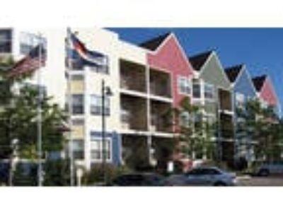 Cottage Hill Senior Apartments - Cottage Studio