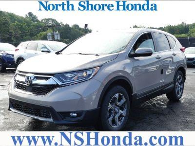 2019 Honda CR-V (Sandstorm)