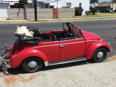 1965 Convertible Bug. Garaged for decades
