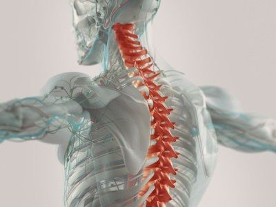 Consult Doctor for Degenerative Disc Disease Treatment in Plano TX