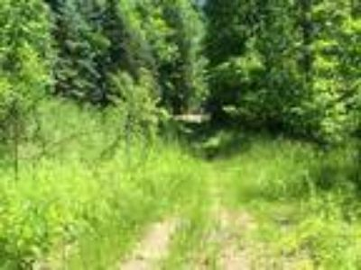 Online Auction - 6 Acres of Vacant Land in Orion Twp.