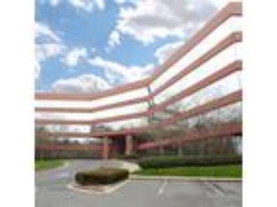 Norcross, Corner window executive suite Class A Building