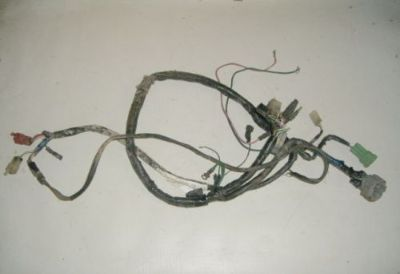 Sell 98 Honda Fourtrax 300 4x4 Wiring Harness 12254 motorcycle in Farmersburg, Indiana, United States