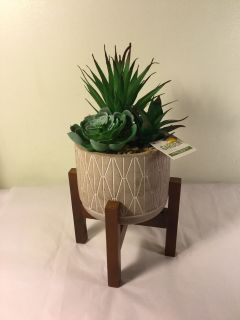 NWT Jumbo Cement and Wood succulent planter, retail $14.99.
