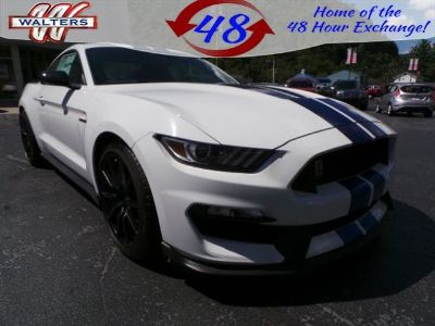 2018 Ford Mustang Shelby GT 350 (Oxford White)