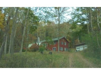 3 Bed 1 Bath Foreclosure Property in Climax, NY 12042 - County Route 26