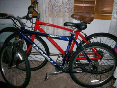 $200 univega alpina 500 mountain bike