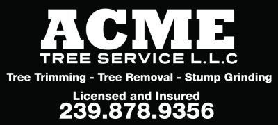Affordable and Professional Tree Service