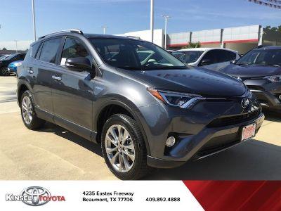 2018 Toyota RAV4 Limited (gray)