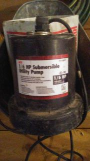 Ace sump pump