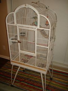 Bird Cage & 3 Parakeets For Sale