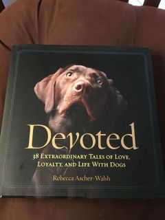 DEVOTED - TALES OF LIFE WITH DOGS