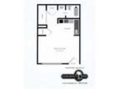 Coconut Inn - Studio with Loft, 1 BA