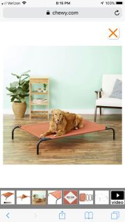 Steel Framed Elevated Dog Bed Size Large
