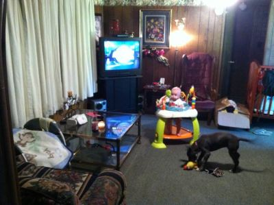 - $350 A room for rent in a 3bes 2 bath trailer  (Rustongrambling )