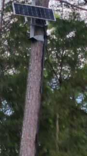 Tree Mount For A Solar Panel (Lancaster)