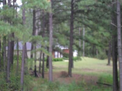 4 Bed 2.5 Bath Foreclosure Property in Elba, AL 36323 - County Road 514