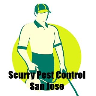 Scurry Pest Control San Jose