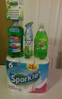 #1 Cleaning Bundle-$15.00