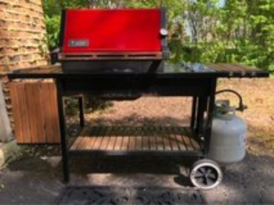 Weber Propane Gas Grill.