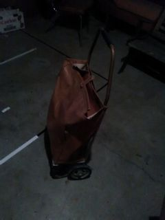Grocery bag with wheels