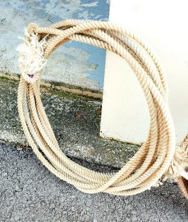 western roping ropes prices is each