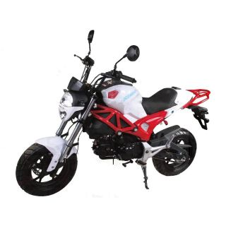 2018 AWL LITTLE MONSTER 125 250 - 500cc Scooters Jacksonville, FL