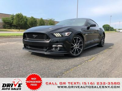 2017 Ford Mustang GT Fastback (Shadow Black)