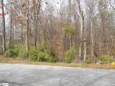 Laurens Approximately 9 acres in the ci...