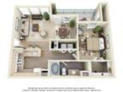 Montfort Place Apartments - One BR x One BA Medium