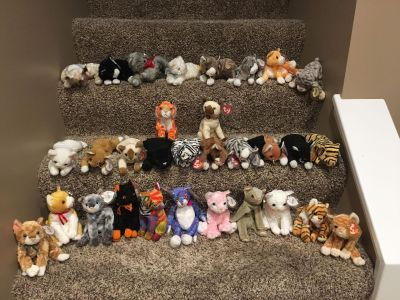 New beanie baby cats pick one for $3