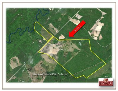 Hinson Tract-866 Acre-Hunting, Fishing, Farm-Nichols, SC- For Sale