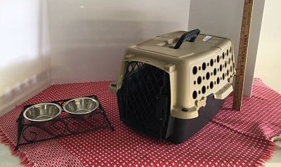 Pet carrier and Feeding dish
