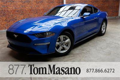 2019 Ford Mustang (Velocity Blue Metallic)