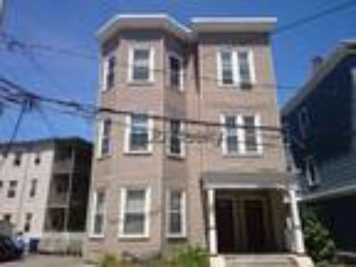 Jamaica Plain- Modern Three BR Two BA, D+D, Washer/dryer in unit! Deck Sept 1