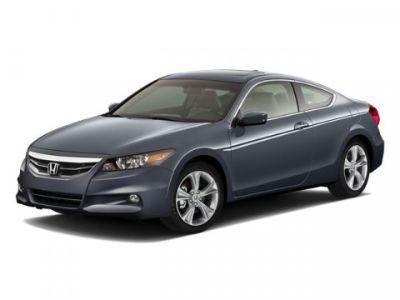 2011 Honda Accord EX-L V6 (Gray)