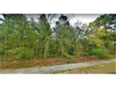 Vacant Land for sale in Land O Lakes, FL