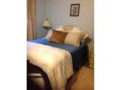 Roommate wanted to share Studio One BA Apartment...