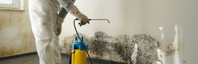 Water Disaster with Mold and Remediation Service you can Trust0