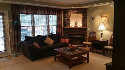 Beautiful furnished quiet basement apartment in Johns Creek
