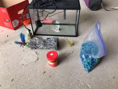 5 gallon fish tank with supplies