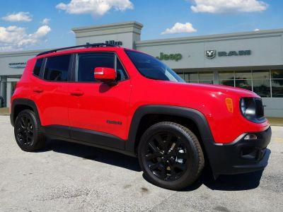 2018 Jeep Renegade panel ()
