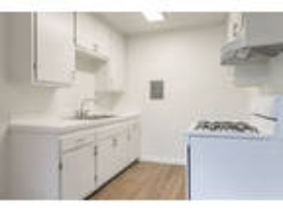 Pacific Avenue Apartments - Three BR Two BA