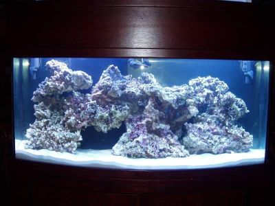 ISO saltwater equipment and Rock