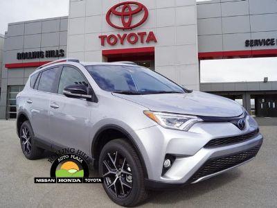 2018 Toyota RAV4 se (Silver Sky)