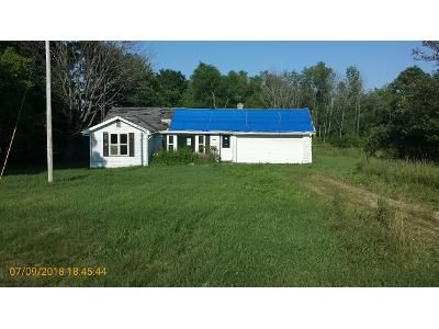 Foreclosure Property in Hartford, MI 49057 - County Road 681
